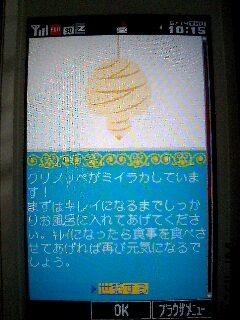 ミイラ化(>_<)