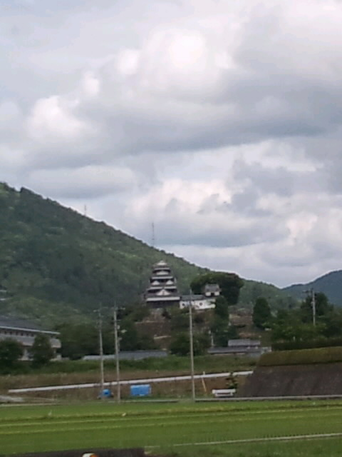 大洲城(愛媛県大洲市)