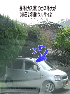 アダ○トな時間を邪魔する是澤たち!