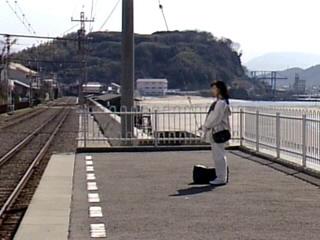 ウドちゃんの旅してゴメン/愛知県岡崎市