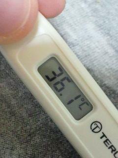 順調に熱が下がってるみたいです。